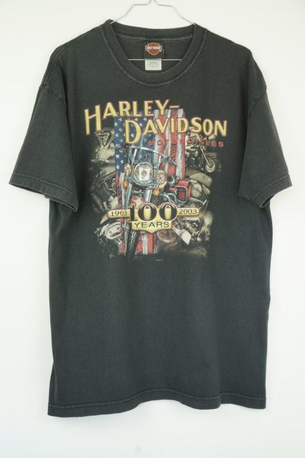 2003-Harley-Davidson-100-Years-Medina-Ohio-Vintage-T-Shirt-