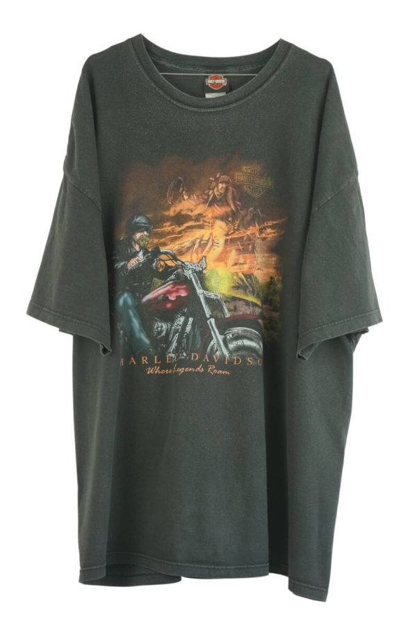 2002-harley-davidson-where-legends-roam-petersons-florida-vintage-t-shirt
